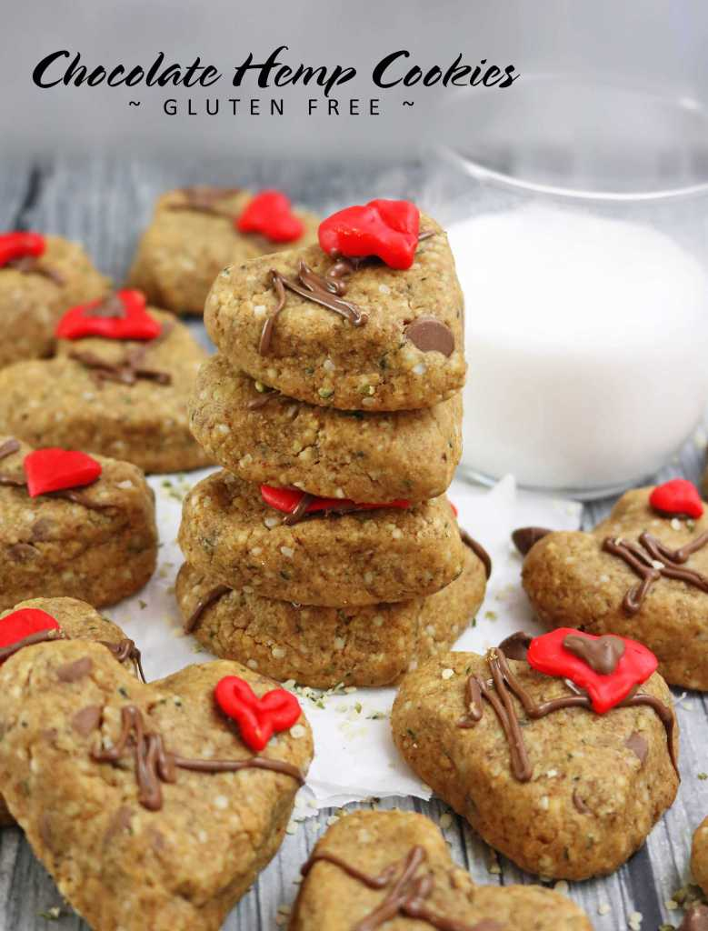 Chocolate Hemp Cookies
