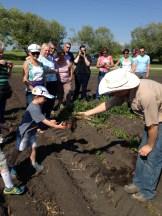 Hanno Buyks presents a potato from the ground to a truly grateful and amazed recipient photo - Karen Anderson