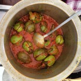 baigan or eggplant is indigenous to India and a most beloved vegetable photo - Karen Anderson