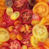tomatoes - photo credit - Karen Anderson