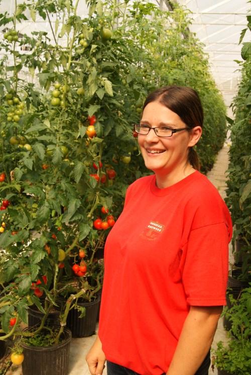 Carmen Fuentes - Innisfail Grower's Tomato grower photo - Karen Anderson