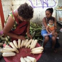 corn - still a Mexican staple food photo - Karen Anderson