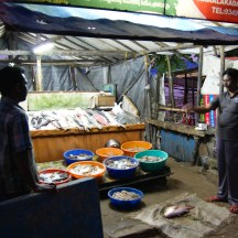 Kochin fish market at night - photo - Karen Anderson