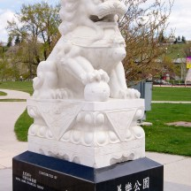 Sien Lok Park is the only greenspace in Chinatown - photo credit - Karen Anderson