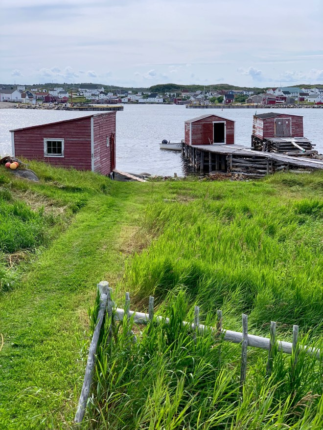 Green path to red sheds on Fogo Island - photo by Karen Anderson