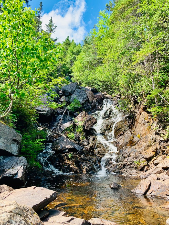 Pissamare Falls, NL - photo by Karen Anderson