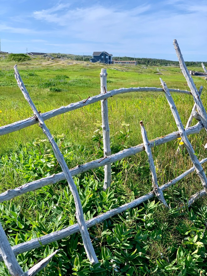 East Turpin Trail, Fogo Island, NL - photo by Karen Anderson