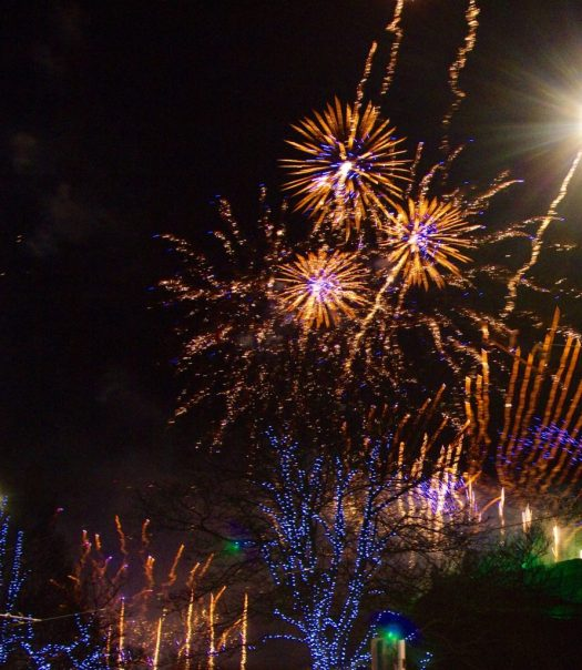 An explosion of colourful fireworks above the Edinburgh skyline taken in 2015 by Eric Richardson
