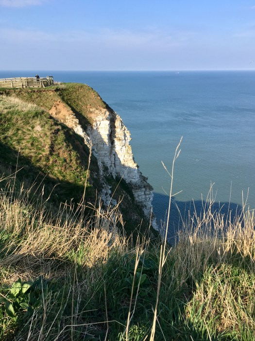 The sun highlights the whiteness of the chalk cliffs tumbling down to the sea below