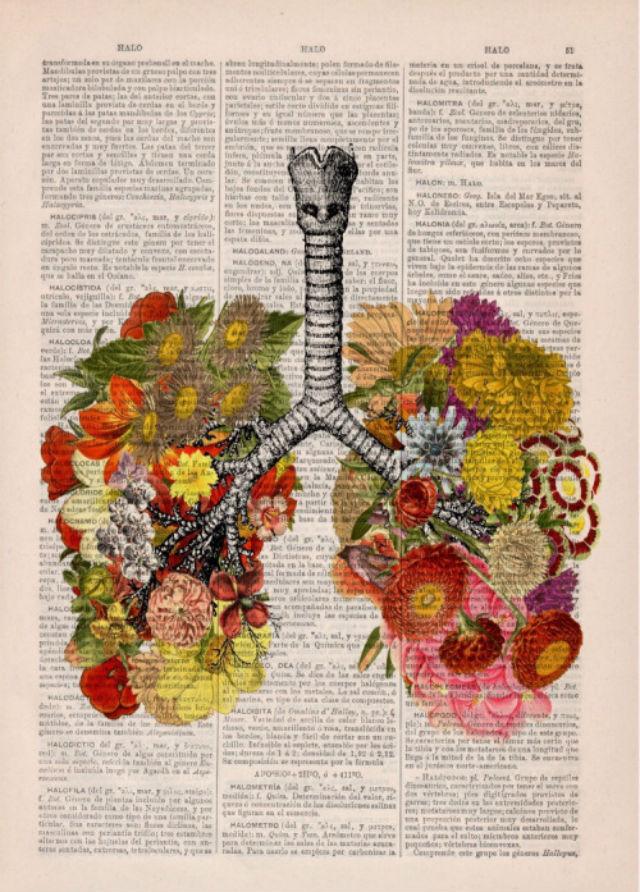 Pustite svoja pluća da dišu