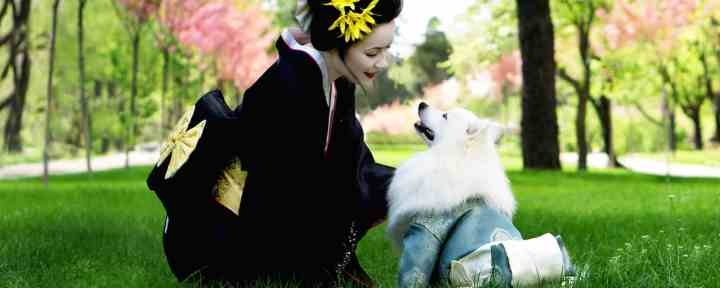 How Pets Also Helps You To Be Happier And Healthier: 5 Ways Pet Can Make Your Daily Life Better