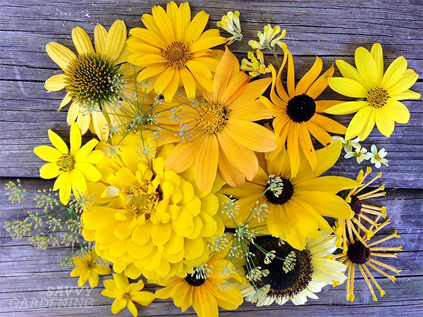 yellow-flowers-inset
