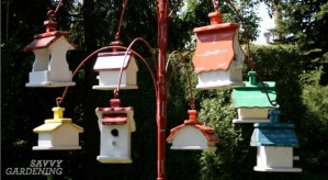 Bird house maintenance