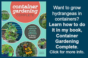 Grow hydrangeas in containers with this book.