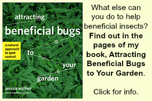 Beneficial Insect book