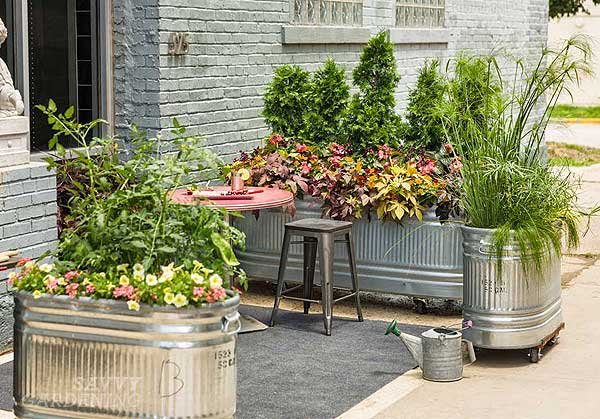 upcycling garden ideas: stock tanks