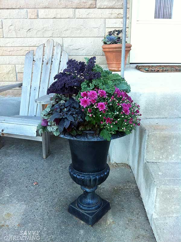 Create A Moody Fall Container With Black Purple And Other Dark