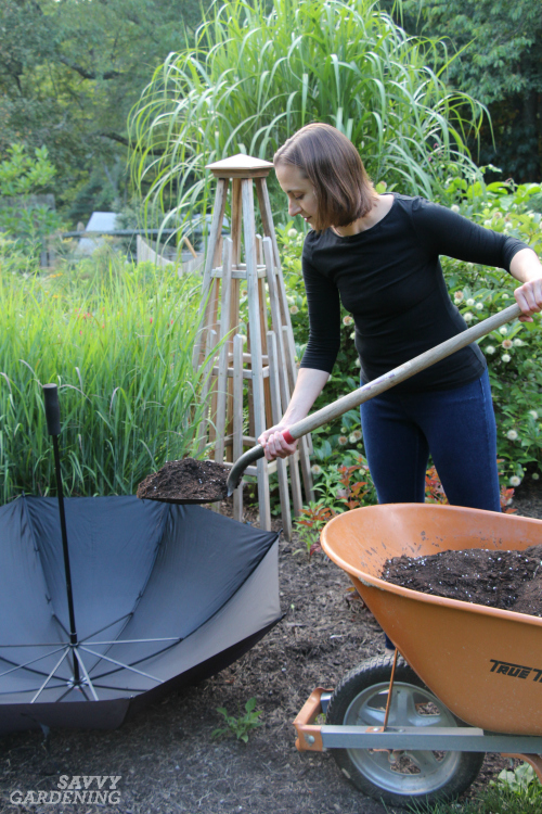 Use an upturned umbrella as a cool container for herbal tea plants.