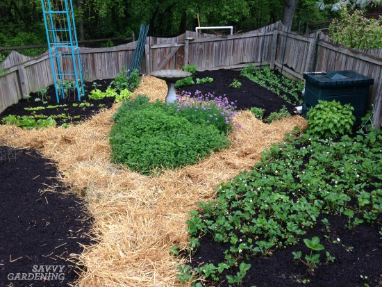 Straw Mulch Is A Great Addition To The Vegetable Garden.