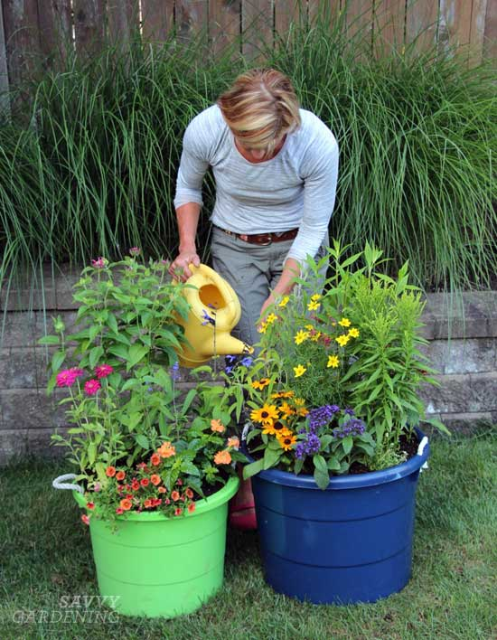Tips For Watering Container Gardens