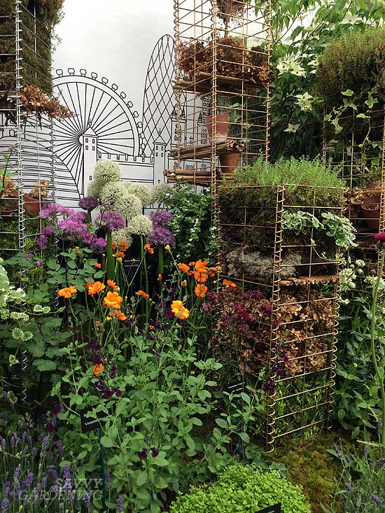 John Cullen Gardens at the Chelsea Flower Show