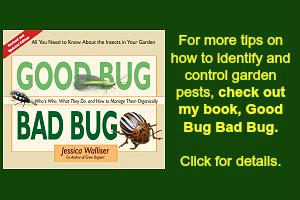 Garden Pest Control Book