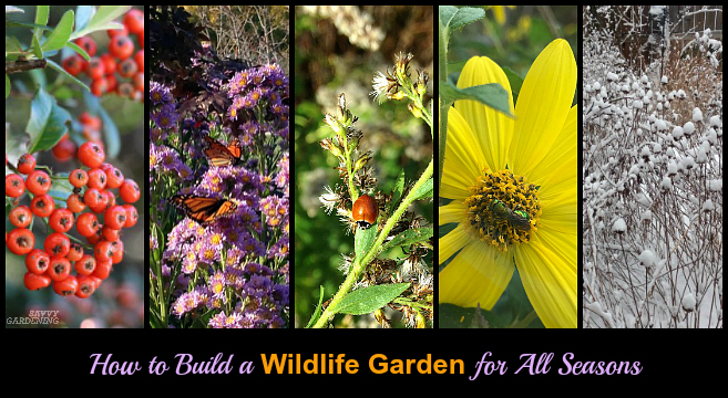 Learn how to build a year-round wildlife garden.