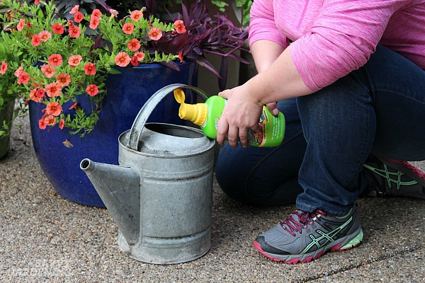 Liquid fertilizers for container gardening are often the easiest to use.
