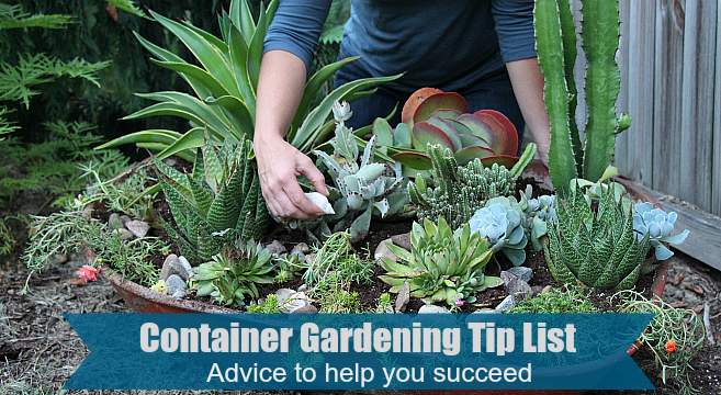 Container gardening tip list for success.