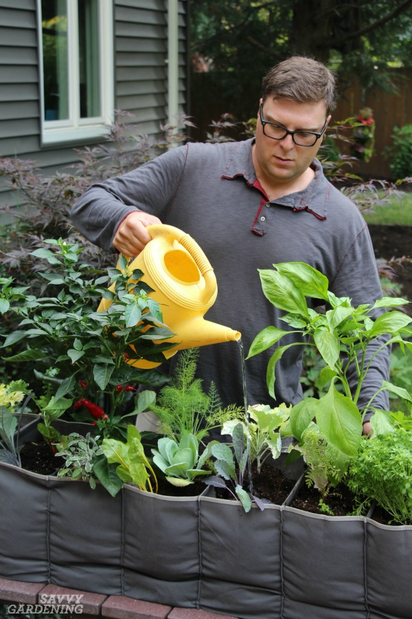 Watering tips for container gardens.
