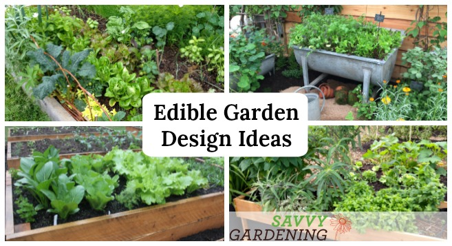Edible Garden Design Ideas To Boost Production And Beautify