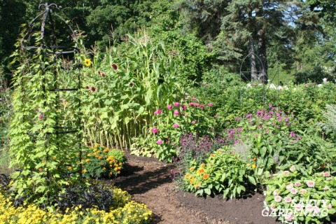 Add interest and vertical growing space to your vegetable garden with simple structures.