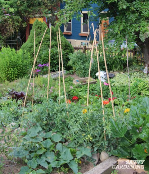Edible Garden Design Ideas to Boost Production and Beautify your Space