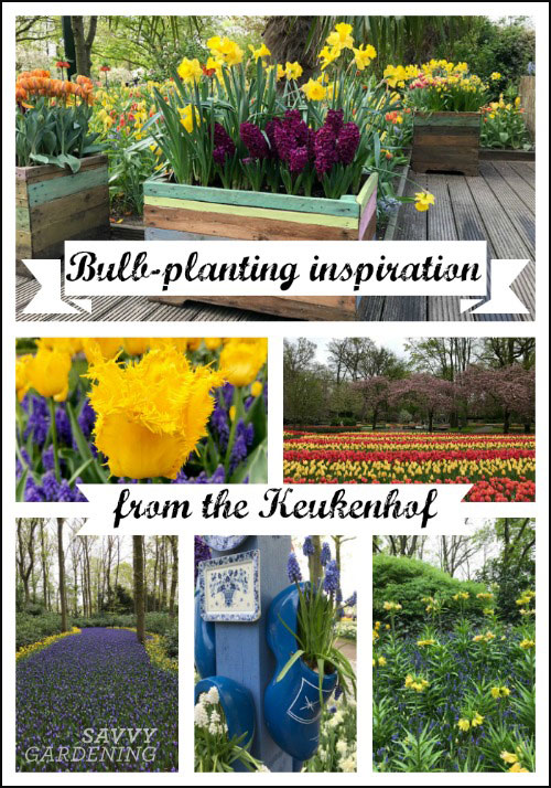 Bulb-planting ideas and inspiration from the Keukenhof gardens