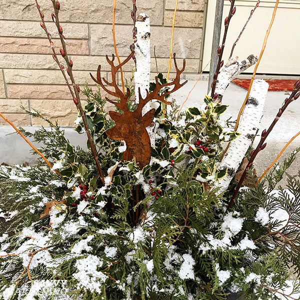 a rusted reindeer stake in a winter container arrangement