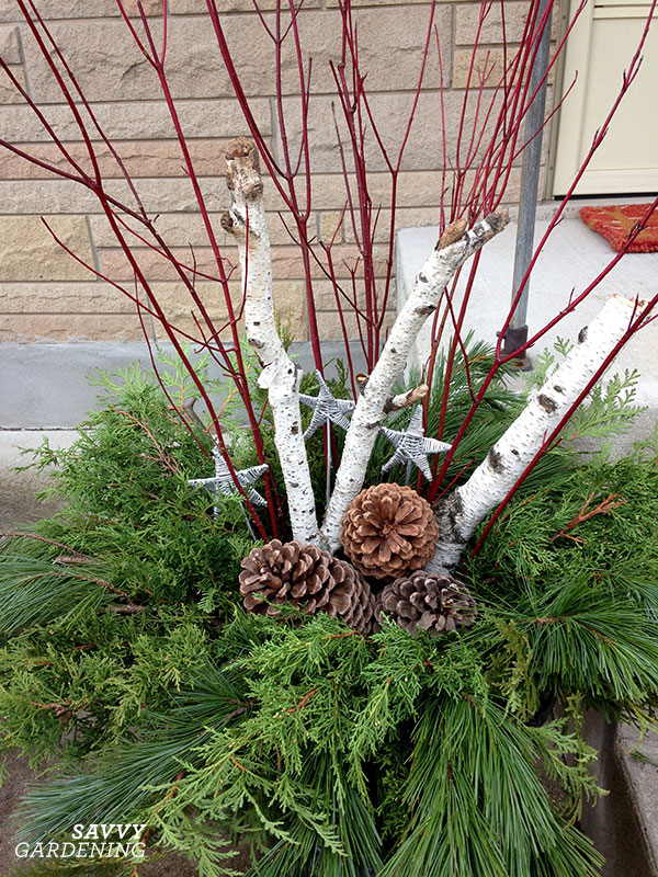 Colourful sticks, stars, pinecones and birch logs in a winter container garden