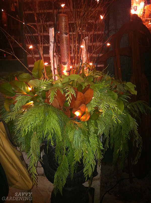 add mini lights to an outdoor holiday container arrangement