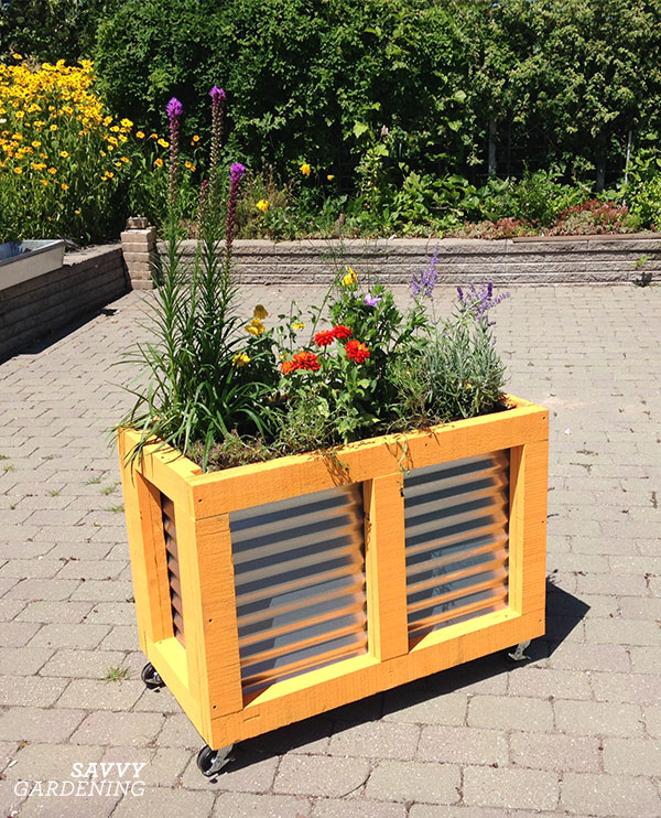 Corrugated steel sheets were added to a raised bed frame, and then placed on wheels for easy transport from storage to the garden.