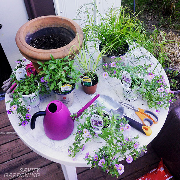 Pairing plants at my makeshift potting table.