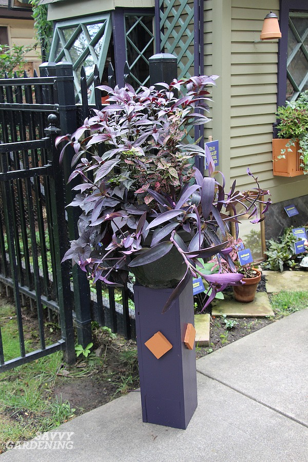 Purple perennial flowers to add power and pop to your landscape.