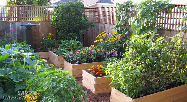 Planting a raised bed: Tips on spacing, sowing, and growing in raised bed gardens #sponsored