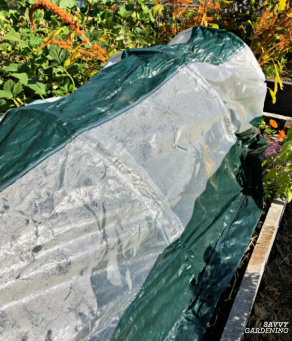 A garden tunnel kit is a quick way to protect vegetables.