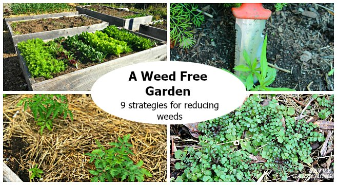 Use these simple strategies to reduce weeds in the garden