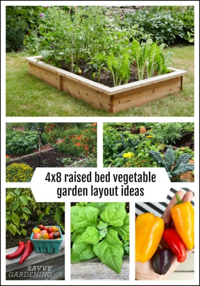 4x8 Raised Bed Vegetable Garden Layout Ideas What To Sow Grow