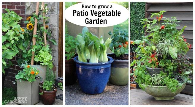 Patio Vegetable Garden Setup And Tips, Deck Vegetable Garden