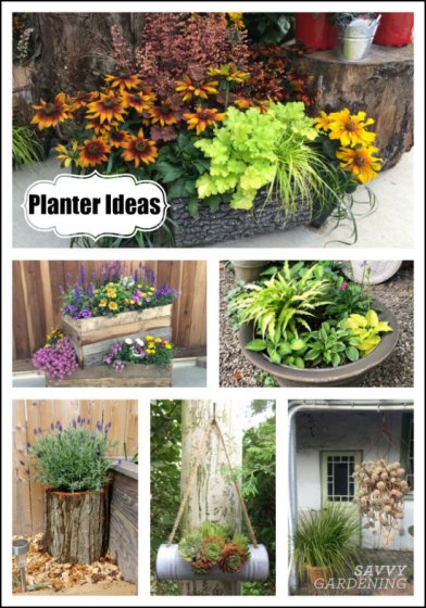planter ideas for big and small arrangements