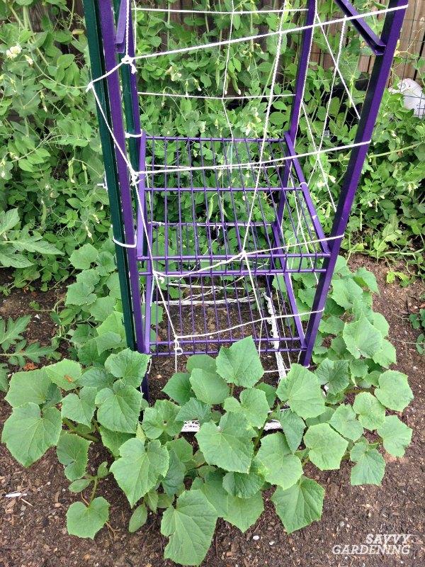 recycled closet organizer in the garden