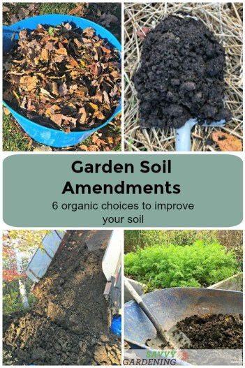 Learn about six garden soil amendments to improve your soil