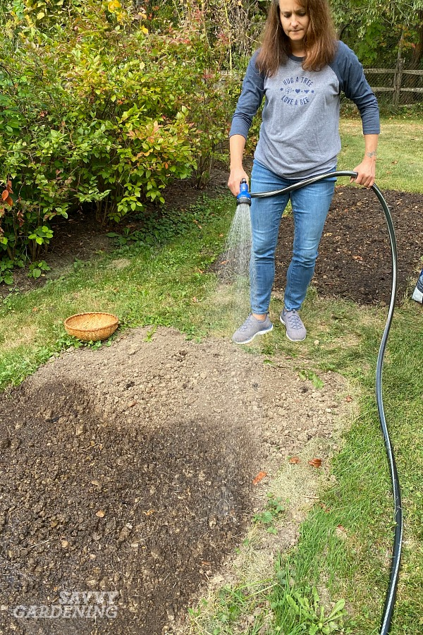 Planting grass seed: Step by step instructions