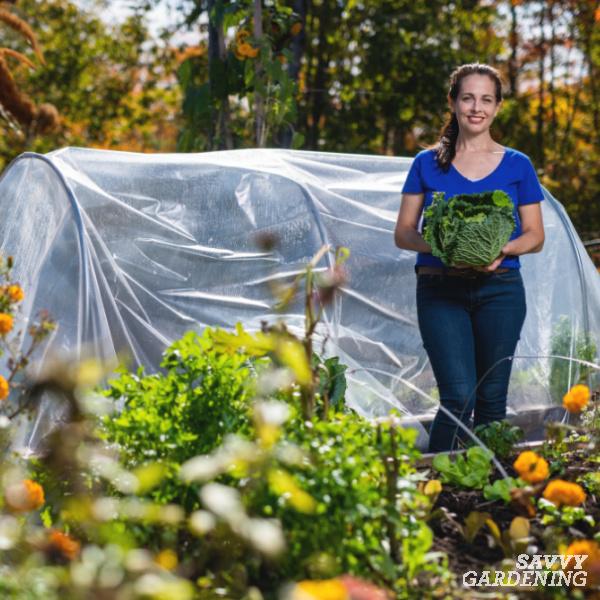 Season extending with a garden tunnel